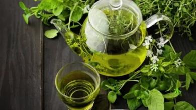 Yeşil Çay Diyeti İle 5 Kilo Verebilirsiniz